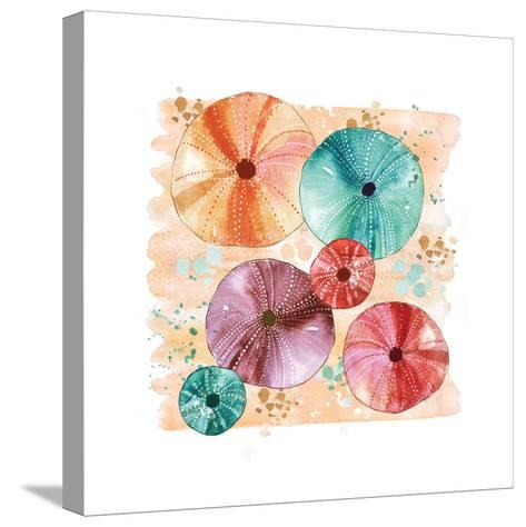 Beachcomber Sea Urchins-Sara Berrenson-Stretched Canvas Print