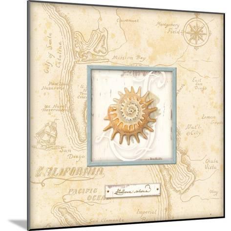 Sea Treasure III-Charlene Audrey-Mounted Art Print