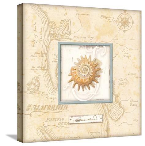 Sea Treasure III-Charlene Audrey-Stretched Canvas Print