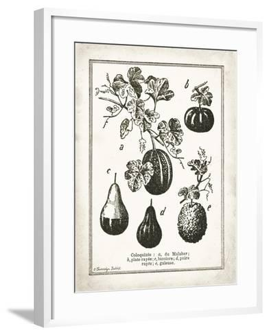 French Gourds-Gwendolyn Babbitt-Framed Art Print