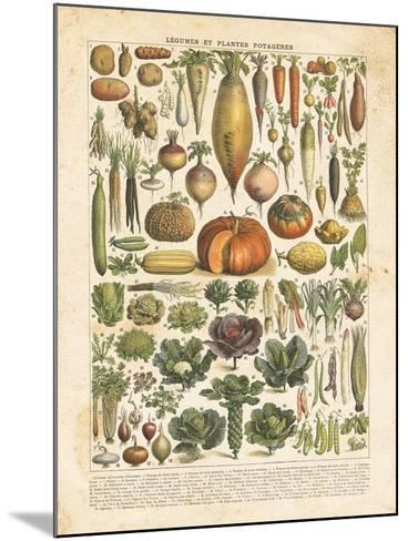 French Vegetable Chart-Gwendolyn Babbitt-Mounted Art Print