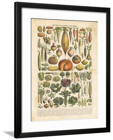 French Vegetable Chart-Gwendolyn Babbitt-Framed Art Print