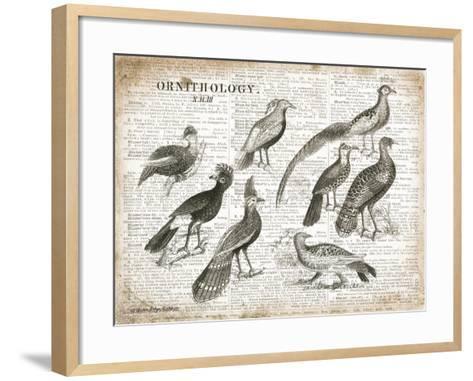 Birds I-Gwendolyn Babbitt-Framed Art Print