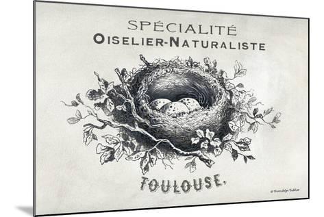 French Bird Nest II-Gwendolyn Babbitt-Mounted Art Print