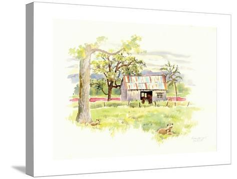 Doug's Shed-Gwendolyn Babbitt-Stretched Canvas Print