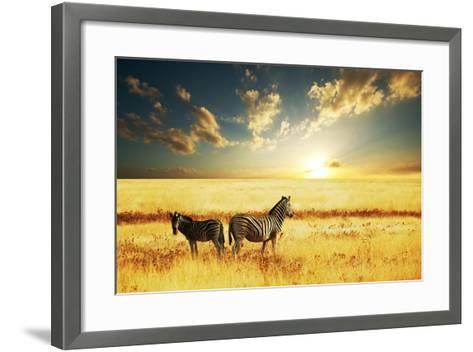 Zebras at Sunset-Galyna Andrushko-Framed Art Print