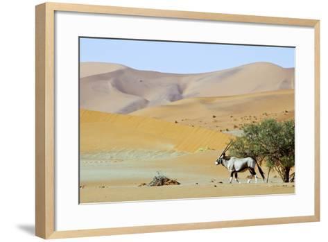 Wandering Dune of Sossuvlei in Namibia with Oryx Walking on It-Damian Ryszawy-Framed Art Print