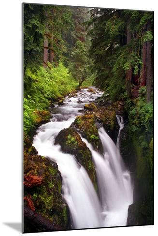 Sol Duc River Falls-Douglas Taylor-Mounted Photo