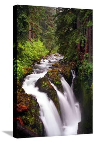 Sol Duc River Falls-Douglas Taylor-Stretched Canvas Print