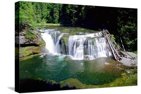 Lewis River Lower Falls-Douglas Taylor-Stretched Canvas Print