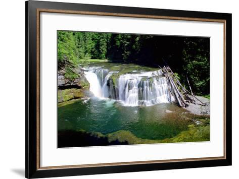 Lewis River Lower Falls-Douglas Taylor-Framed Art Print