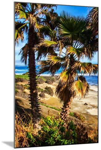 La Jolla Palms I-Alan Hausenflock-Mounted Photo
