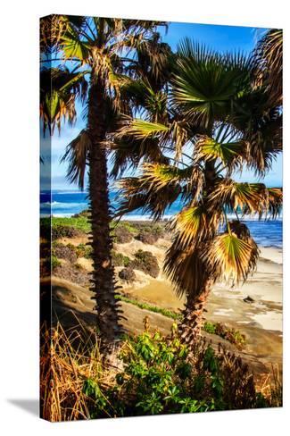 La Jolla Palms I-Alan Hausenflock-Stretched Canvas Print