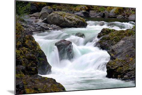 Salmon Cascades-Douglas Taylor-Mounted Photo