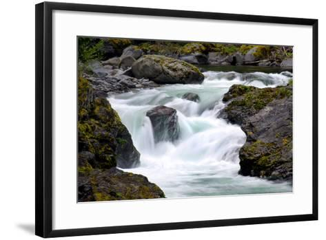 Salmon Cascades-Douglas Taylor-Framed Art Print