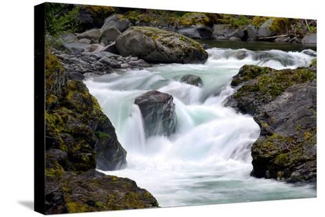 Salmon Cascades-Douglas Taylor-Stretched Canvas Print