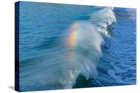 Rainbow Wave II-Lee Peterson-Stretched Canvas Print