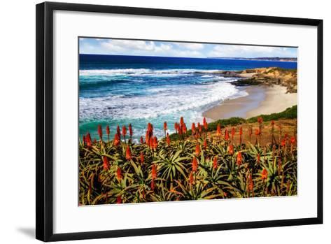 Point La Jolla I-Alan Hausenflock-Framed Art Print