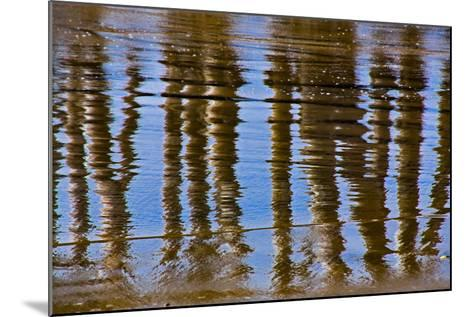 Pier Reflections II-Lee Peterson-Mounted Photo