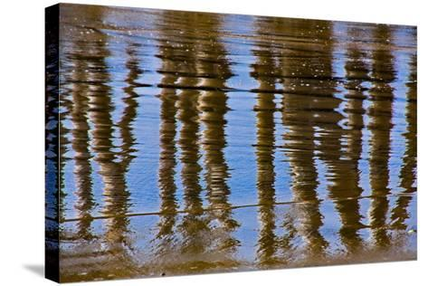 Pier Reflections II-Lee Peterson-Stretched Canvas Print