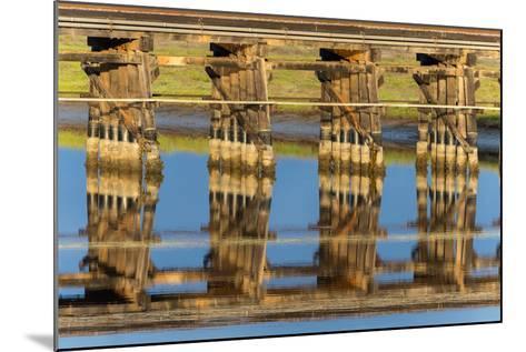 Railroad Bridge Reflection-Lee Peterson-Mounted Photo