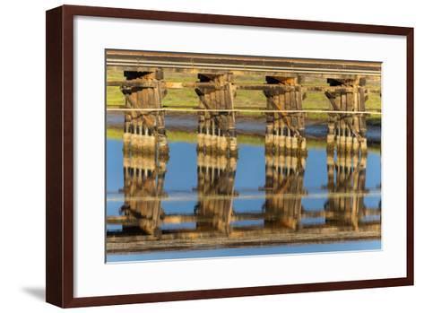 Railroad Bridge Reflection-Lee Peterson-Framed Art Print