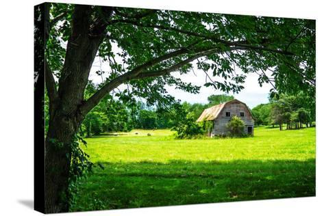 Old Dutch Barn-Alan Hausenflock-Stretched Canvas Print