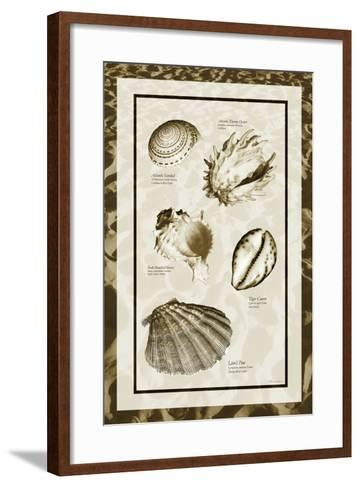Sand & Shells II-Alan Hausenflock-Framed Art Print