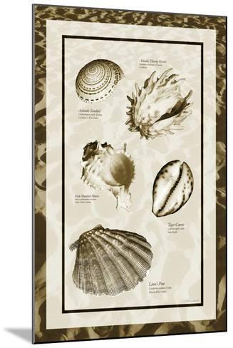 Sand & Shells II-Alan Hausenflock-Mounted Photo