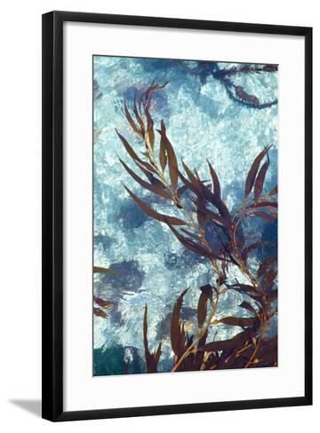 Mermaid Tresses III-Rita Crane-Framed Art Print