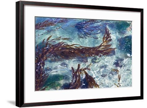 Mermaid Tresses II-Rita Crane-Framed Art Print
