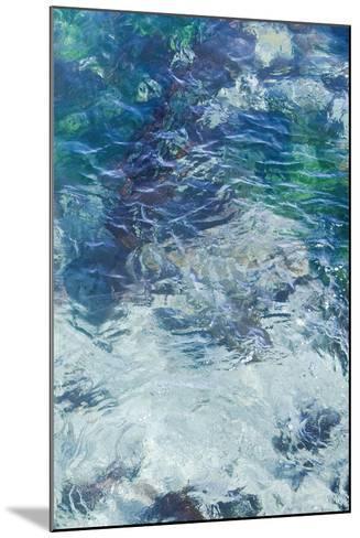 Tide Pool II-Rita Crane-Mounted Photo