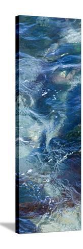Tide Pool III-Rita Crane-Stretched Canvas Print