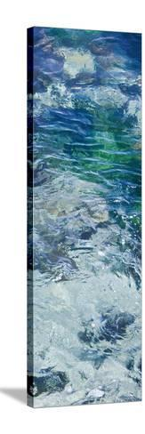 Tide Pool IV-Rita Crane-Stretched Canvas Print