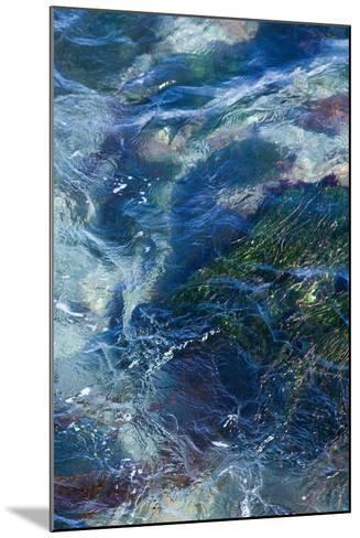 Tide Pool I-Rita Crane-Mounted Photo