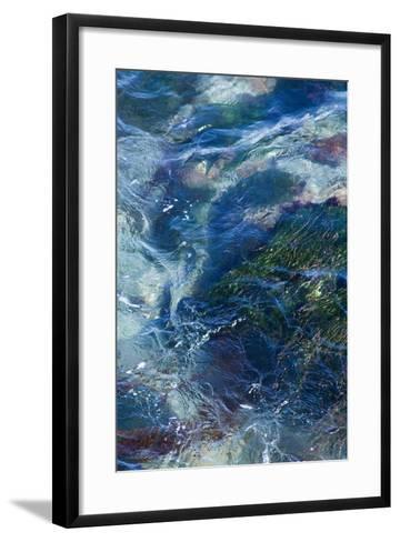Tide Pool I-Rita Crane-Framed Art Print