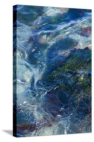 Tide Pool I-Rita Crane-Stretched Canvas Print