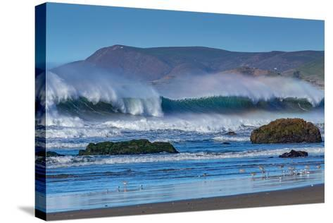 Waves in Cayucos II-Lee Peterson-Stretched Canvas Print