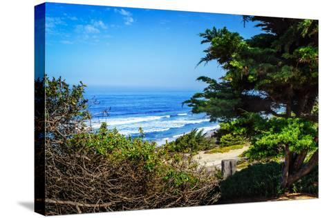 Del Mar Beach II-Alan Hausenflock-Stretched Canvas Print