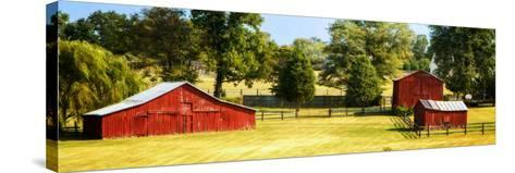 Louisa County I-Alan Hausenflock-Stretched Canvas Print