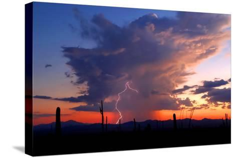 Twilight Lightning II-Douglas Taylor-Stretched Canvas Print