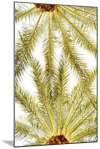Below the Palms VI-Karyn Millet-Mounted Photo