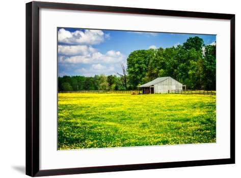 Spring Pasture I-Alan Hausenflock-Framed Art Print