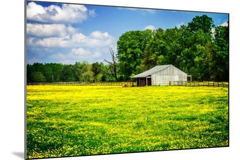 Spring Pasture I-Alan Hausenflock-Mounted Photo