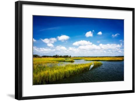 Wetland Herons II-Alan Hausenflock-Framed Art Print