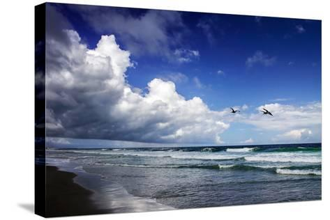 Awesome Beach Day I-Alan Hausenflock-Stretched Canvas Print
