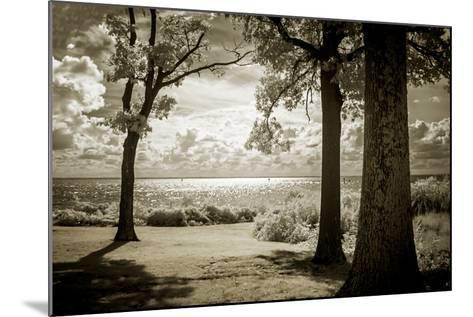 Cobb Island Afternoon II-Alan Hausenflock-Mounted Photo