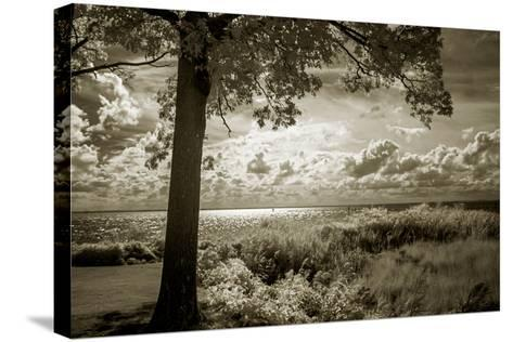 Cobb Island Afternoon I-Alan Hausenflock-Stretched Canvas Print