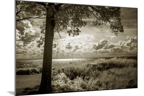 Cobb Island Afternoon I-Alan Hausenflock-Mounted Photo