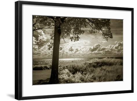 Cobb Island Afternoon I-Alan Hausenflock-Framed Art Print